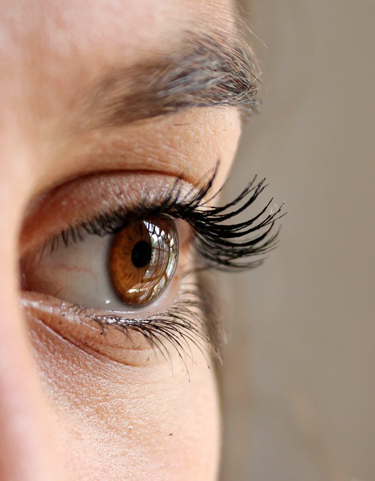 Günstige Kontaktlinsen vom Augen-Optiker in Teningen, Freiburg, München, Essingen, Waldkirch, Sulzburg und Pfaffenweiler